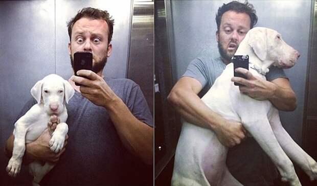 Боже, помоги мне быть таким человеком, каким меня считает моя собака