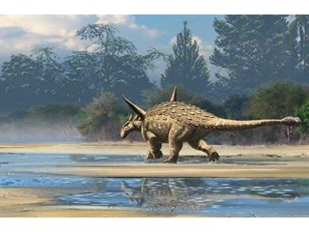 Динозавры из Антарктиды