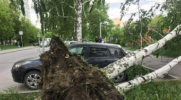 Сорванные крыши и погнутые кресты: ураган оставил без света десятки тысяч жителей
