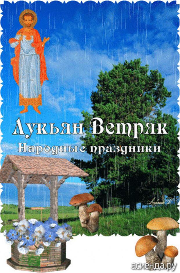 Народный календарь. Дневник погоды 16 июня 2021 года