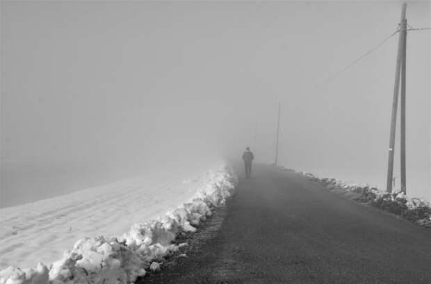 winter walk  by Carlotta  Ricci on 500px.com