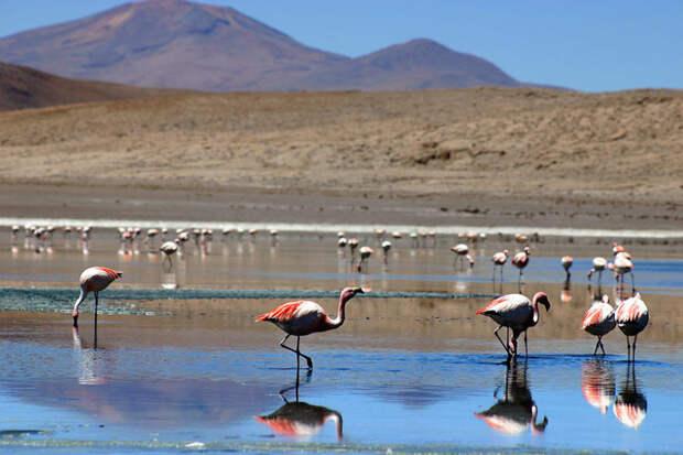 Боливия, провинция Сур-Липез красота, путешествия, фото
