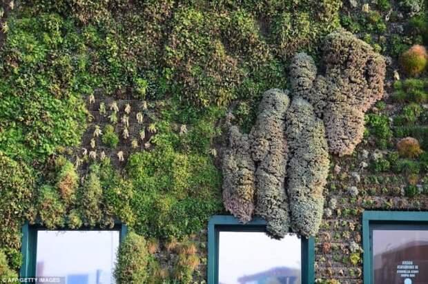 Fiordaliso — уникальный вертикальный сад в Италии