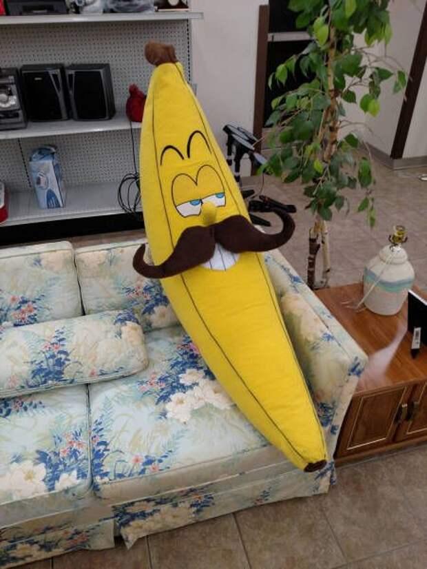 Подборка веселых картинок и фото приколов из сети (10 фото)