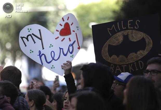 США. Сан-Франциско, Калифорния. 15 ноября. Поклонники Бэткида пришли поддержать героя. (REUTERS/Stephen Lam)