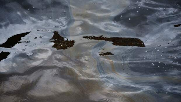 Крупный разлив нефти произошел на месторождении в ЯНАО