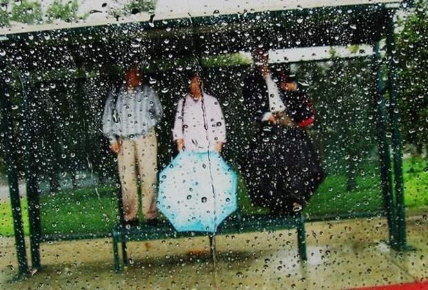 Женщина под дождём плакала и о чём-то просила людей… Оказалось, она спасала Шанечку!