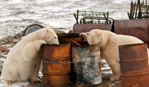 Арктику будут убирать по-новому