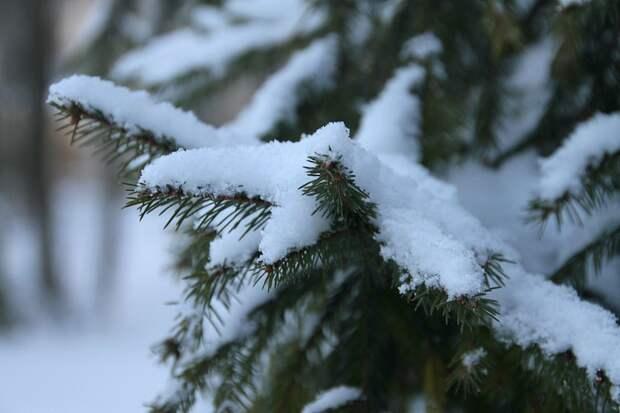 Климатолог предупредила россиян о суровой зиме