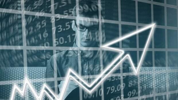Стремительный рост сектора малого и среднего бизнеса ожидается в России