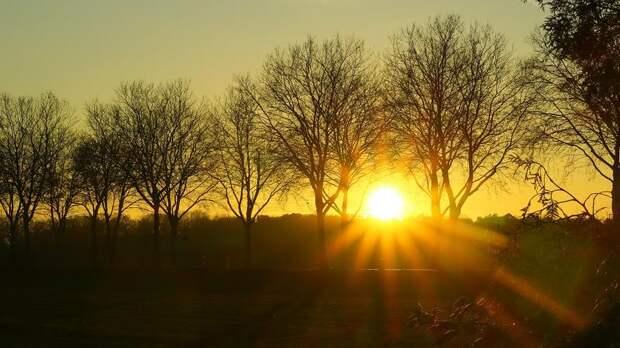 В Ленобласти 18-19 мая ожидается жара до +30 градусов