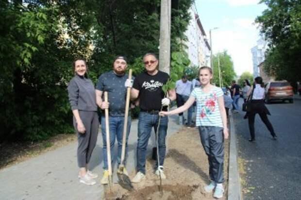 В Калуге озеленили улицу Декабристов