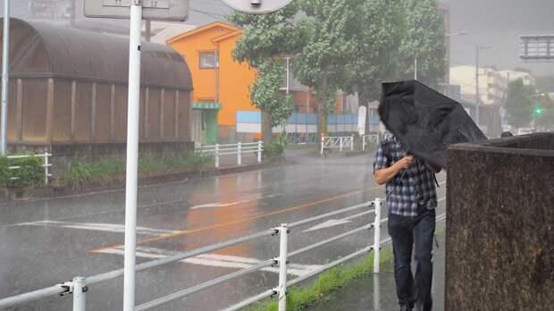 Москвичей попросили не выходить из дома из-за ураганного ветра