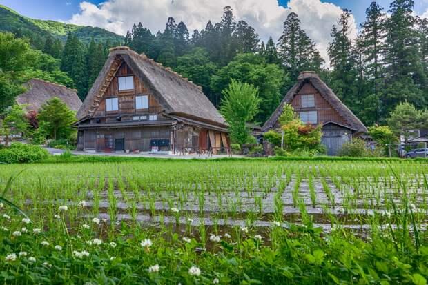 В гостях у сказки: деревня Сиракава, которой самое место где-нибудь в тридесятом государстве