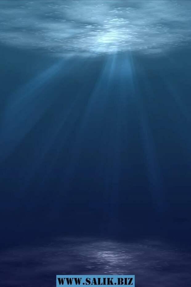 Что находится под морским дном