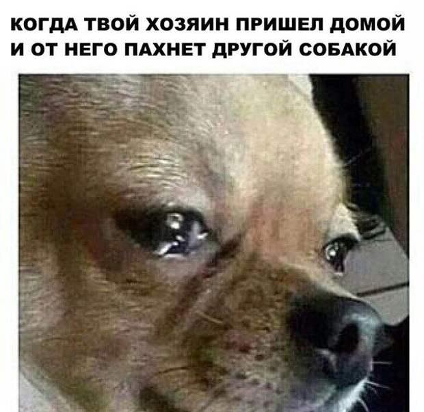 1471289031_115