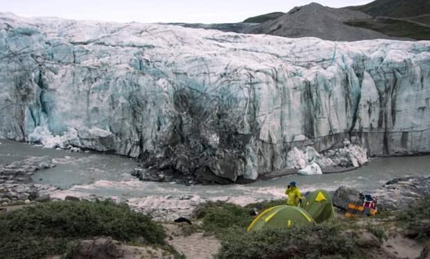 Подо льдом Гренландии на глубине 1,5 километра найдены древние растения