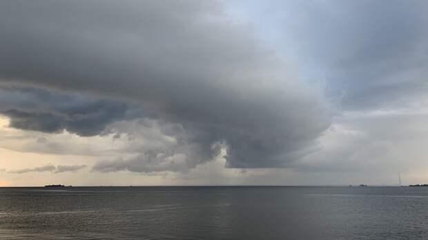 Экспедиция нашла четыре судна времен ВОВ в Финском заливе