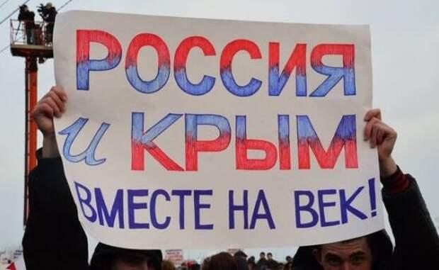 Молчанов: 7 причин, почему России не стоит бояться присоединения Донбасса