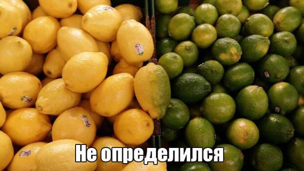 1449053786_prikol-6