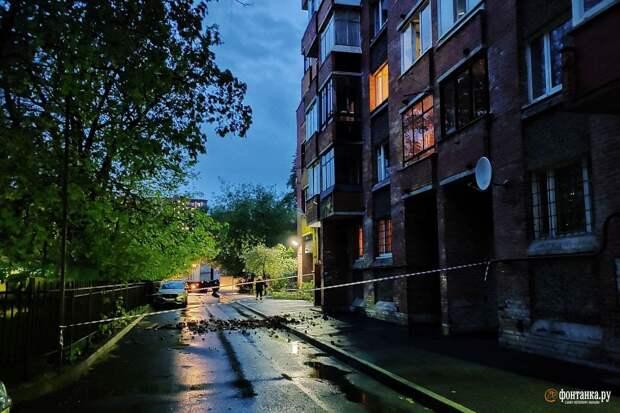 Развалившиеся балконы, реки на дорогах и берёзы-шлагбаумы. Последствия бури в Петербурге