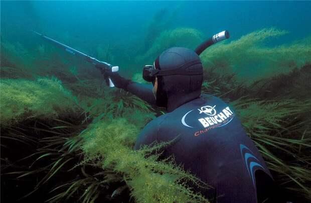 Советы подводному охотнику