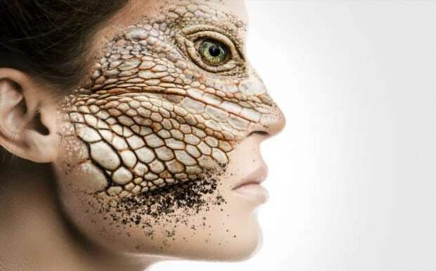 Космический заговор: кто такие рептилоиды