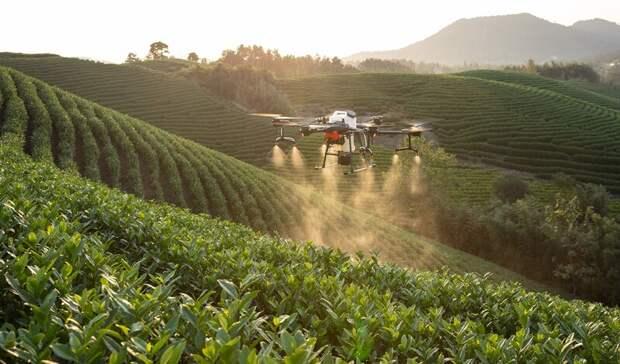 Аграрии выходят в цифровое поле