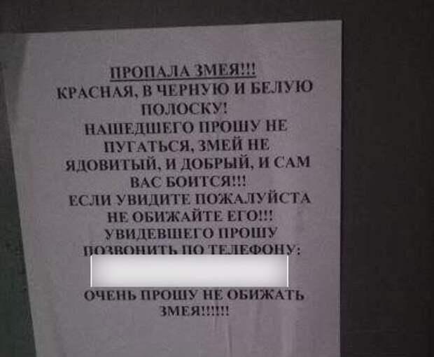 Ростовчанин обратился к соседям с трогательной просьбой Фото: ! Соцсети