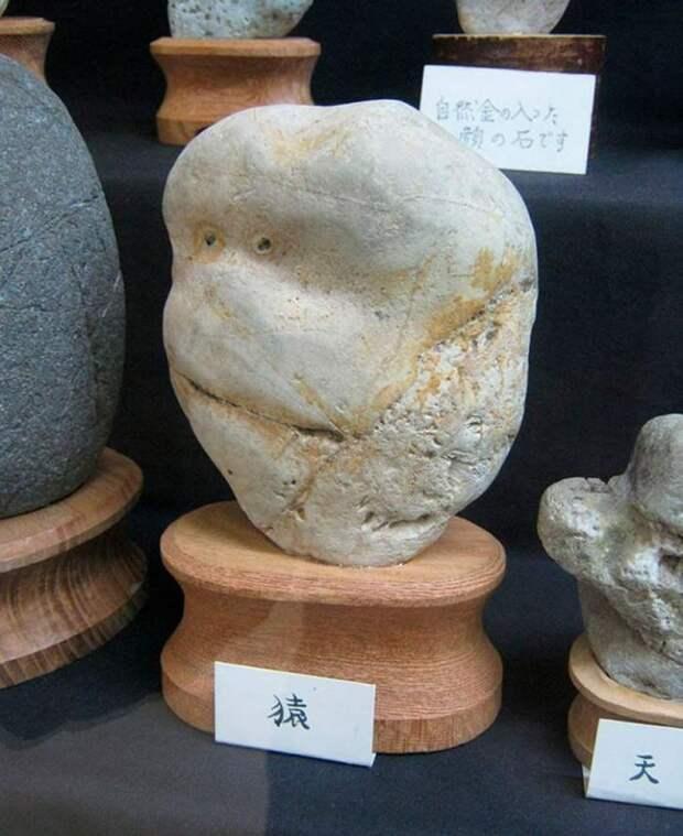 Камни как люди
