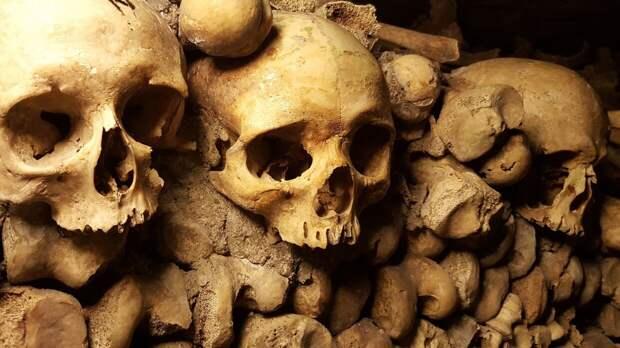 Антропологи нашли на территории Африки самую древнюю могилу человека