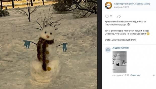 Фото дня: снежный житель Сокола