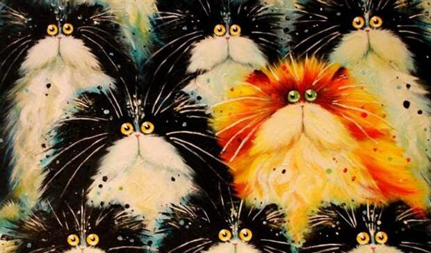 Порода кошек, которая лучше всего подходит вам по знаку зодиака