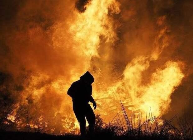 «Все могло взорваться»: приморцы чудом спаслись в бушующем пожаре