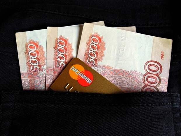 РБК: Деньги от штрафа «Норникелю» могут пойти на зарплаты в Росприроднадзоре