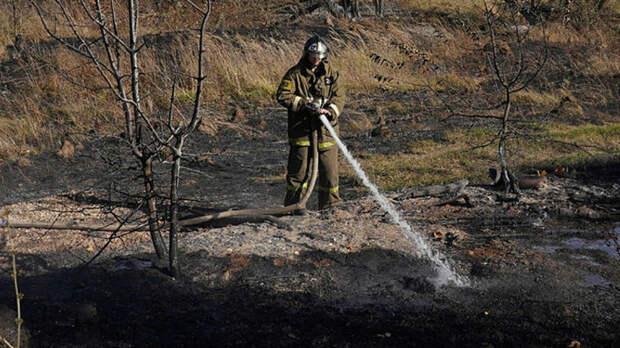 Школьницы сожгли ферму под Пермью ради видео в TikTok