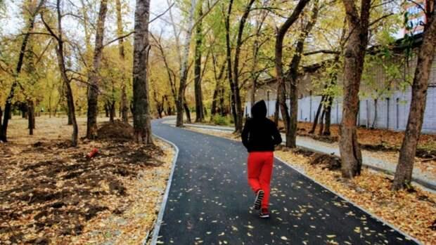 """В барнаульском парке """"Изумрудный"""" появятся новые дорожки для пешеходов и велосипедистов"""