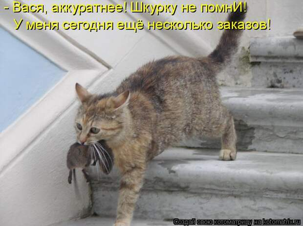 Котоматрица: - Вася, аккуратнее! Шкурку не помнИ! У меня сегодня ещё несколько заказов!