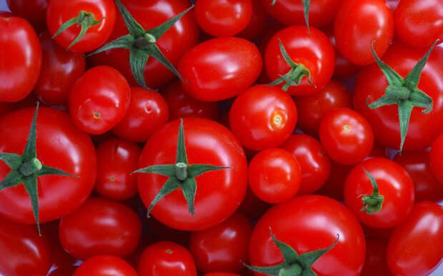 fantastic-tomatoes-wallpaper-44461-45587-hd-wallpapers