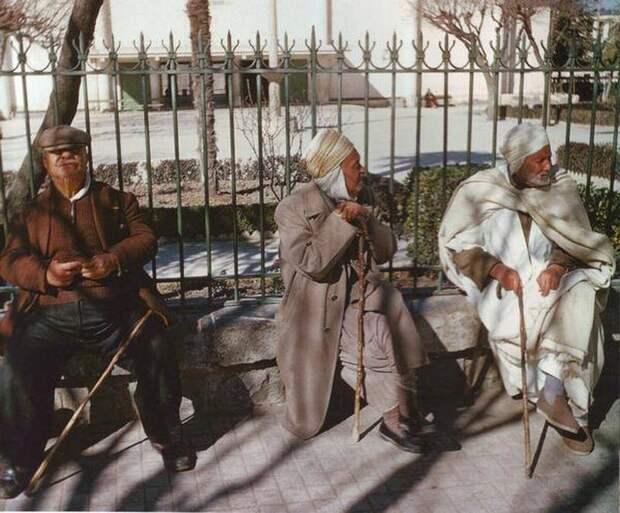 Алжирская война Французского Иностранного легиона - 1 часть