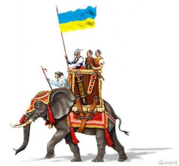 Патриоты массово уезжают из Украины, не желая воевать