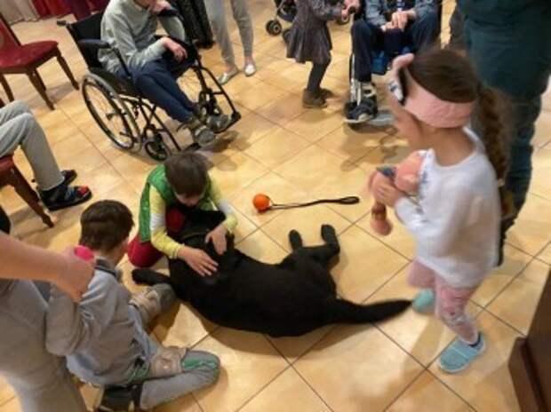 Дети из реабилитационного центра познакомились с собакой-доктором