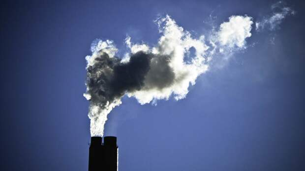 Кабмин подготовит новый законопроект о защите экологии в России