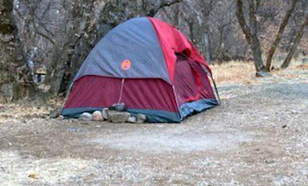 Женщина на полгода заблудилась в лесу. С собой у нее была только палатка, полотенце и стул