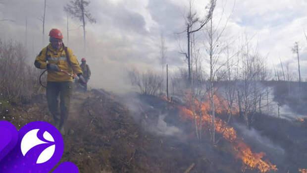 Спасателей с Ямала перебросили на новые пожары в Тюменской области
