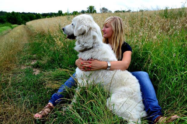 Ученые из США сделали вывод, что собак приручили женщины