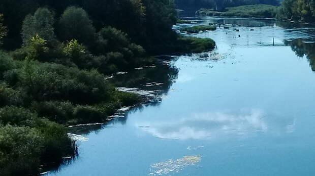 Водолазы вИлекском районе обшарили дно реки инашли пропавшего мужчину