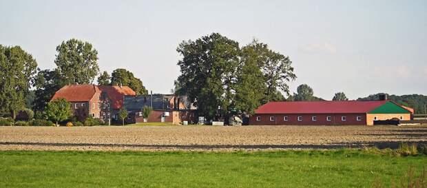 Польские аграрии сильно пострадали из-за антироссийской политики страны