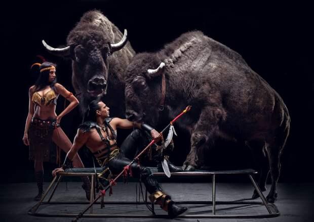 Шоу с дрессированными животными «Дикая планета» приезжает в Нижний Новгород