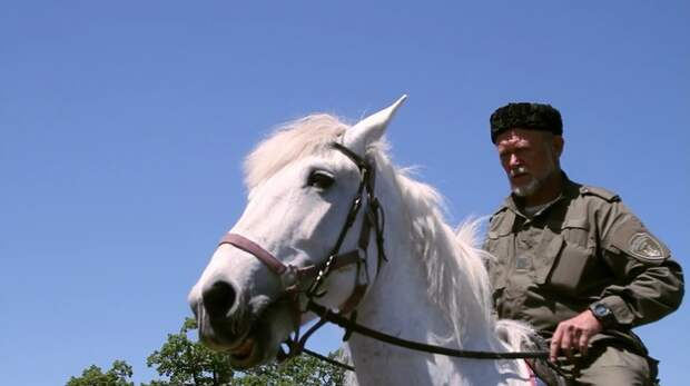 Казаки провели рейд в лесах Севастополя